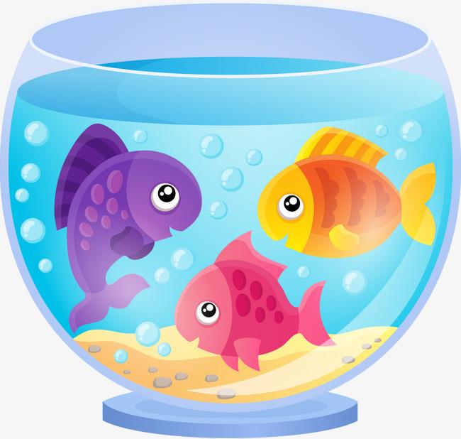 650x618 A Variety Of Fish And Fish Tank, Fish Vector, Cartoon, Vector Png