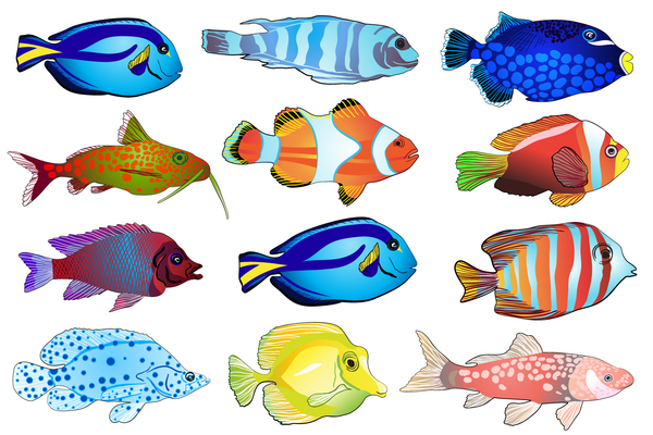 Fish Vector Images