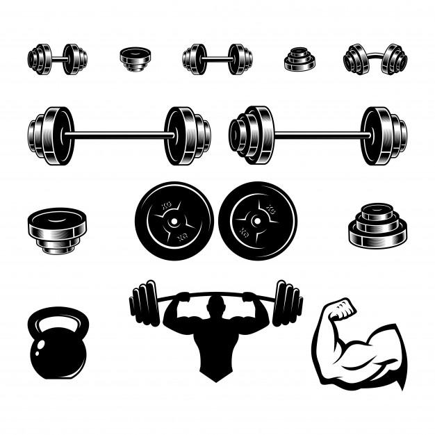 626x626 Set Equipment Fitness Vector Vector Premium Download