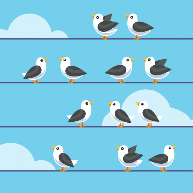 626x626 Flock Of Birds Vectors, Photos And Psd Files Free Download