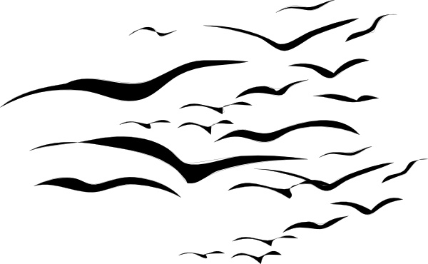 600x370 Flock Of Birds Clip Art Free Vector In Open Office Drawing Svg