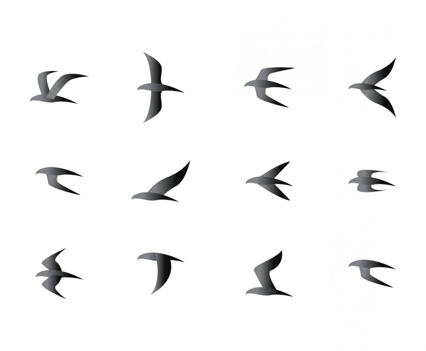 1363x1123 Results For Flock Of Birds Vector