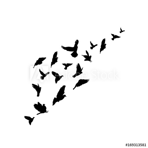 500x500 Silhouettes A Flock Of Birds. Vector Illustration. Isolated On