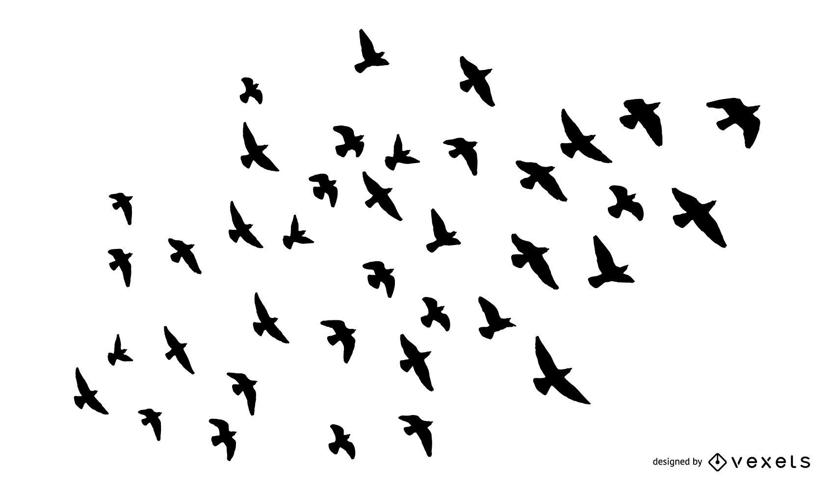 1700x1000 Birds Vector Amp Graphics To Download