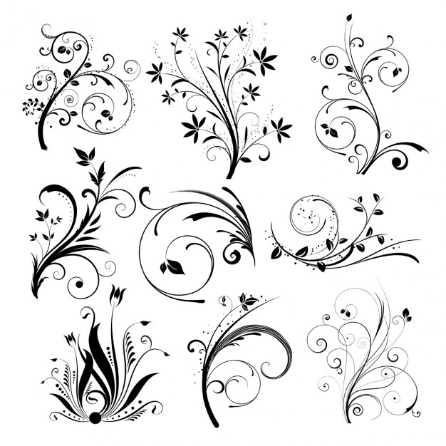 626x626 Floral Vectors, Photos And Psd Files Free Download
