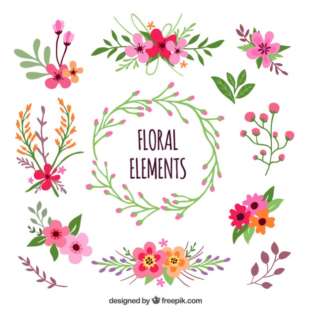 626x626 Floral Elements Vector Free Download
