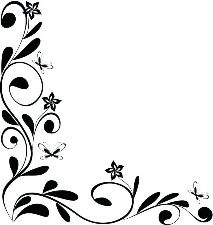 736x777 Flower Design Border Spring White Flowers Design Border Background