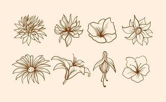 325x200 Flowers Free Vector Art