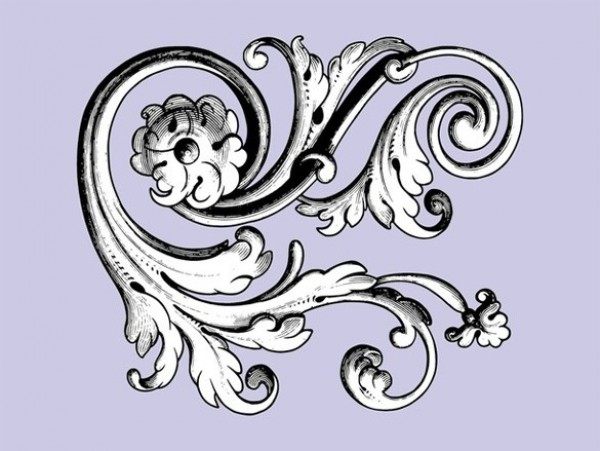 600x451 Vintage Floral Scroll Vector Graphic