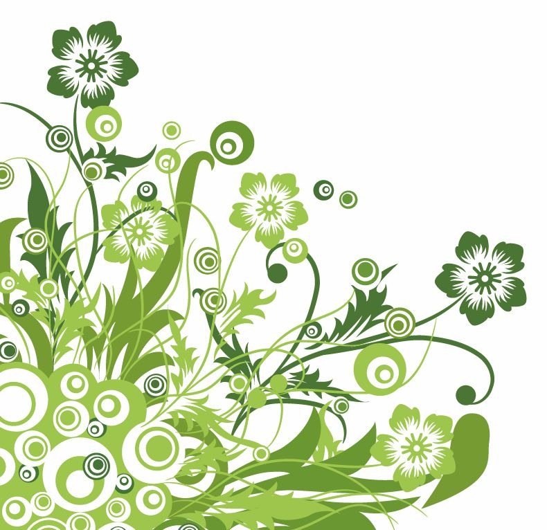 790x766 Graphic Design Flower Images Green Floral Design Vector Graphic