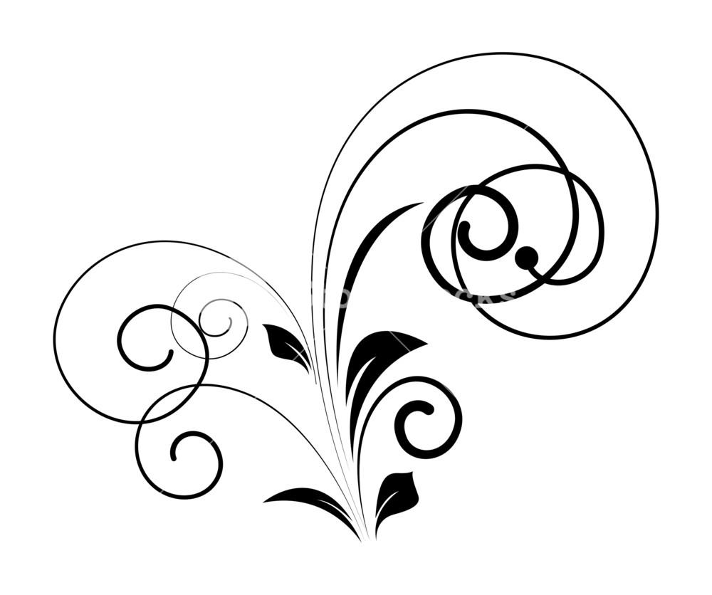 1000x836 Flourish Element Vector Art Design Royalty Free Stock Image
