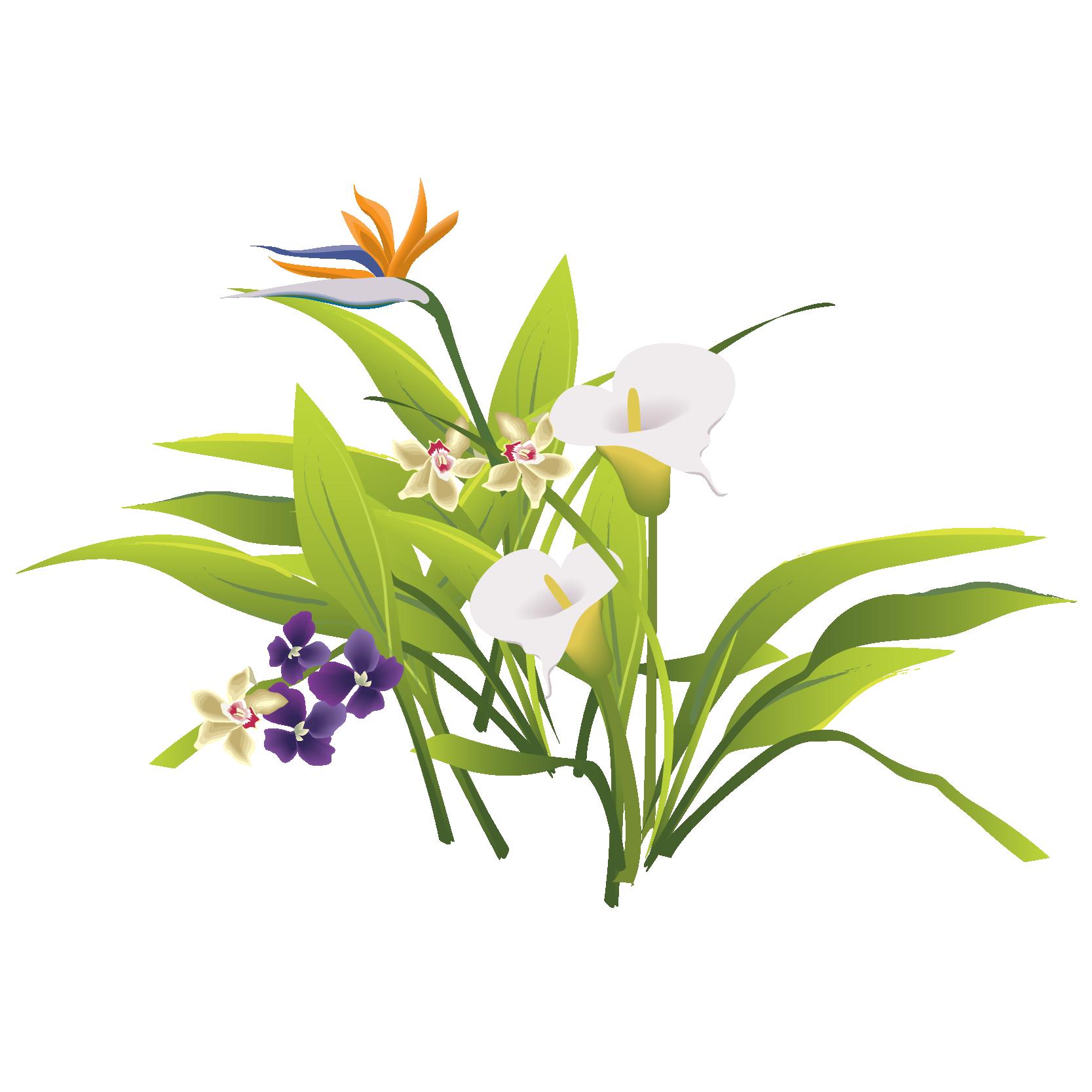 1667x1667 Floral Design Flower Bouquet