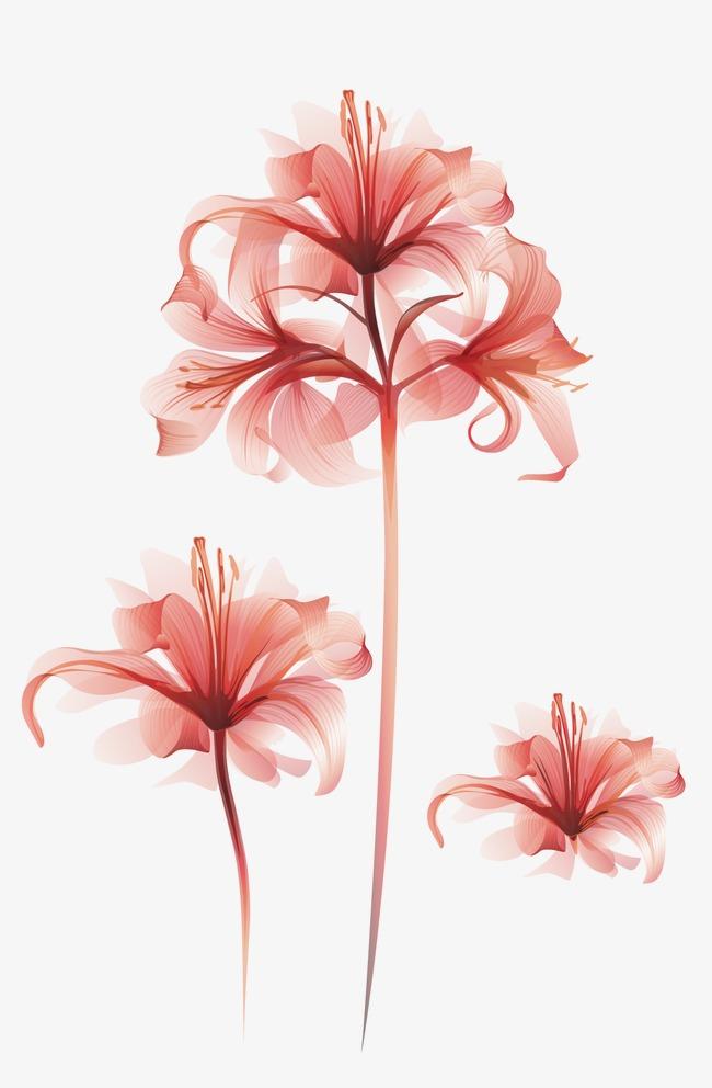 650x992 Vector Material Flower Bouquet, Flower Vector, Vector Bouquet