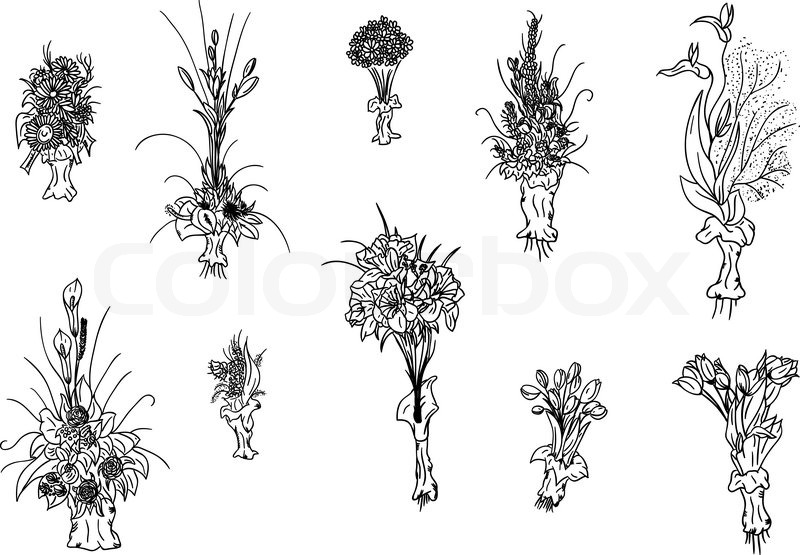800x555 Hand Draw Set Of Flowers Bouquet Stock Vector Colourbox