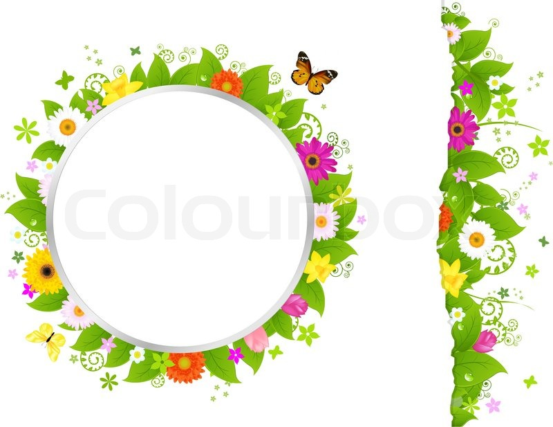 800x617 Circle And Border From Flowers, Isolated On White Background