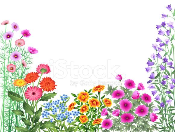 580x440 Garden Flowers Border Stock Vector