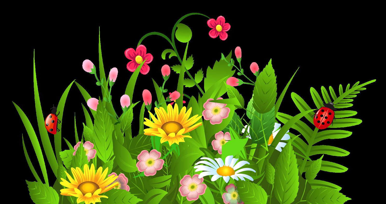 1600x847 Vector Flower