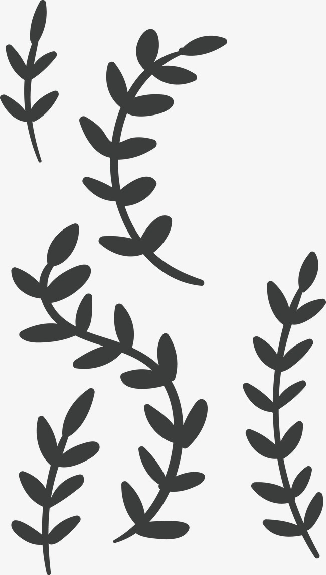 650x1145 Flowers Leaves Border Vector, Border Vector, Stick Figure, Hand