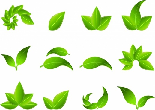 517x368 Leaf Free Vector Download (4,011 Free Vector) For Commercial Use