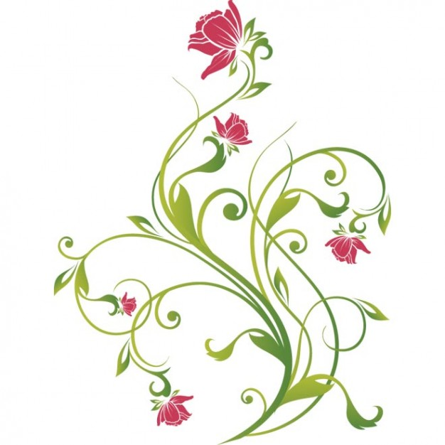 626x626 Pink Flower With Green Leaf Vector Illustration