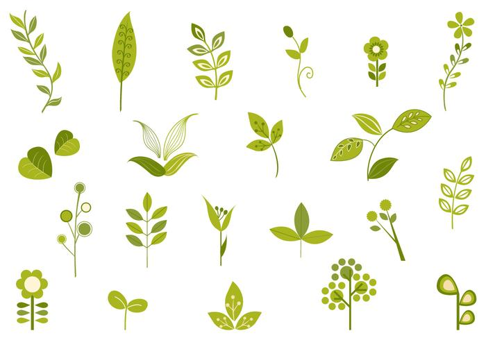 700x490 Retro Leaf Vector Pack