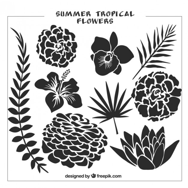 626x626 Set Of Black Wild Flowers And Leaves Vector Premium Download