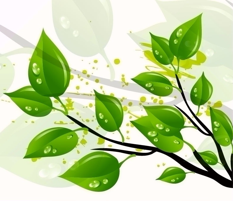 790x683 Abstract Green Leaves Vector Illustration Free Vector Graphics