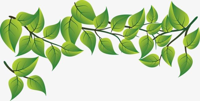 Flower Leaves Png - Flowers Healthy