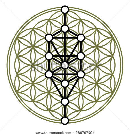 450x470 Stock Vector Kabbalah Sephiroth Tree Of Life Flower Of Life