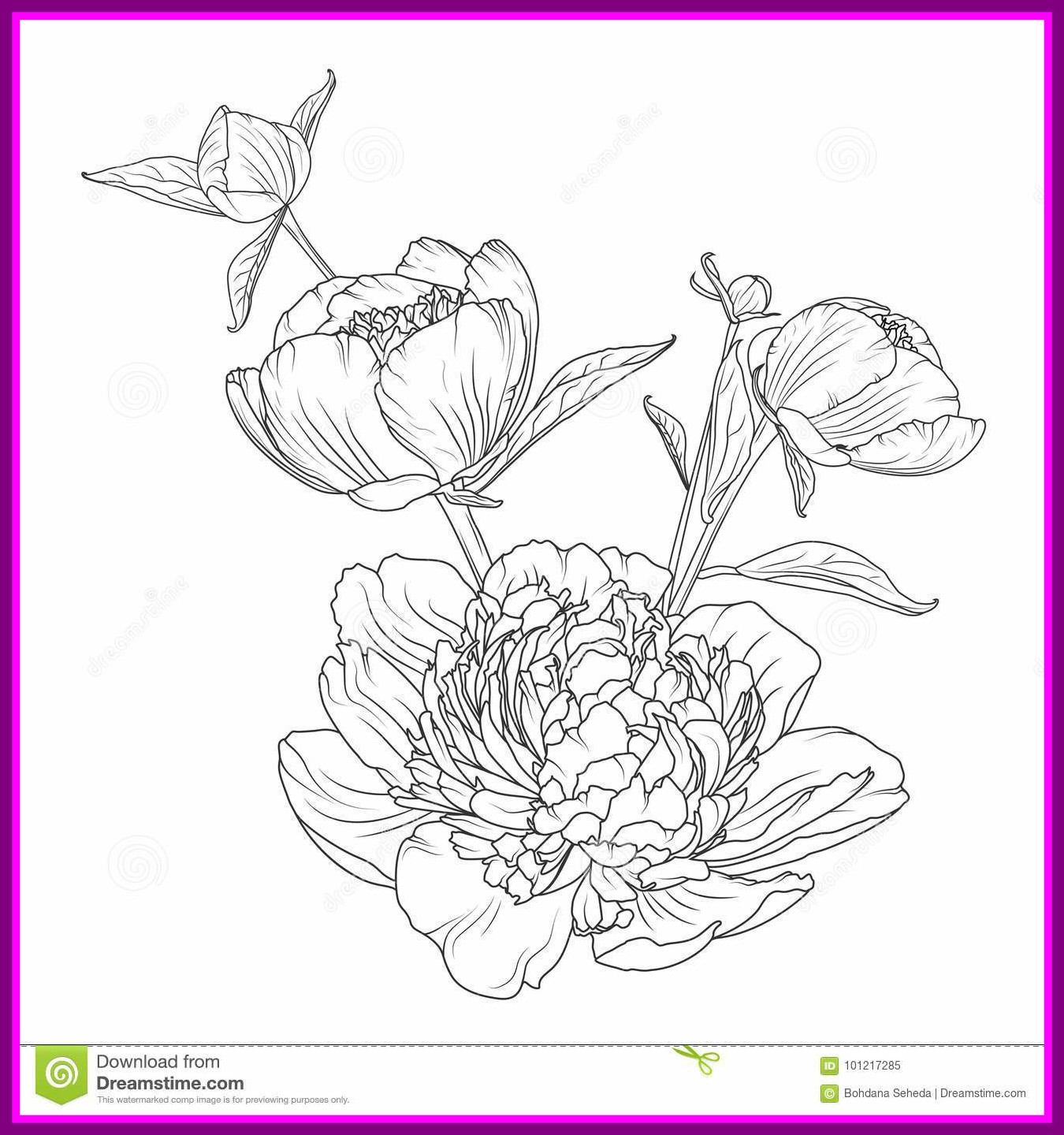 1350x1440 Marvelous Peony Rose Bouquet Composition Isolated Stock Vector