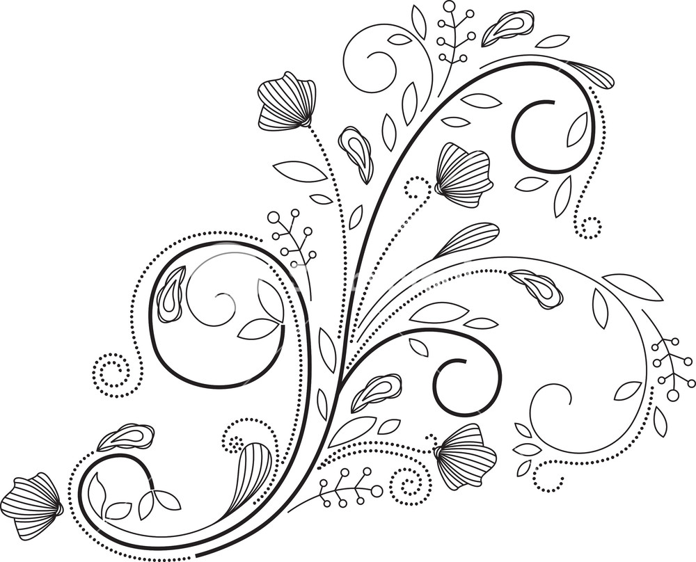 1000x808 Floral Swirl Vector Element Royalty Free Stock Image