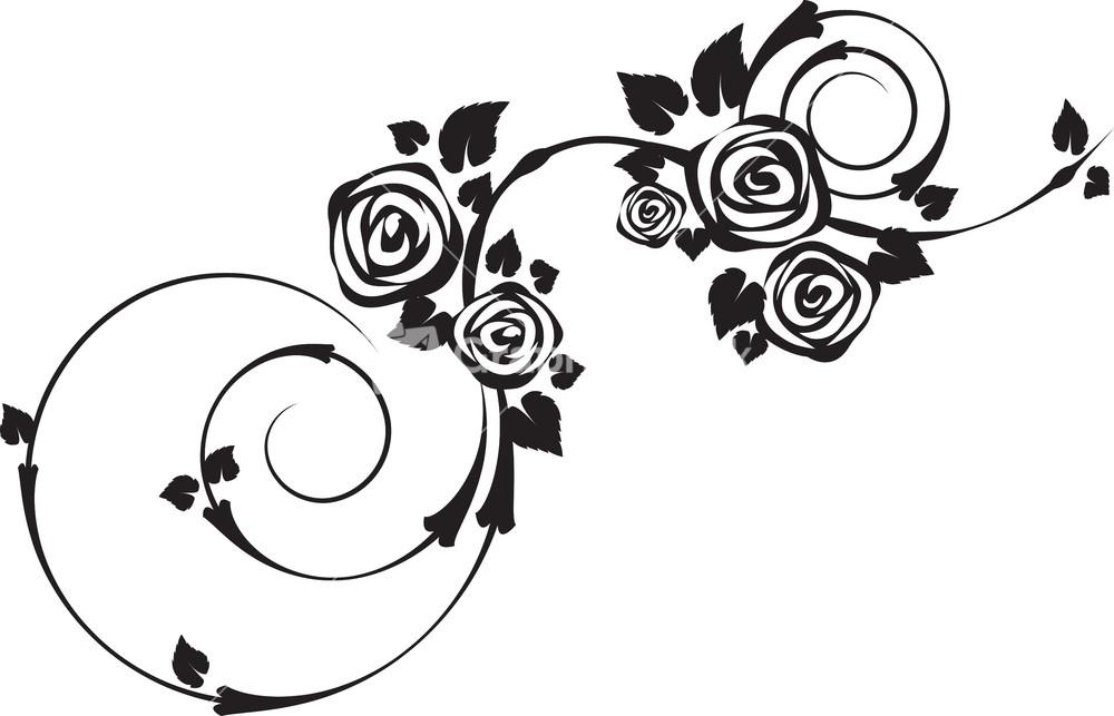 1000x643 Vector Floral Swirls