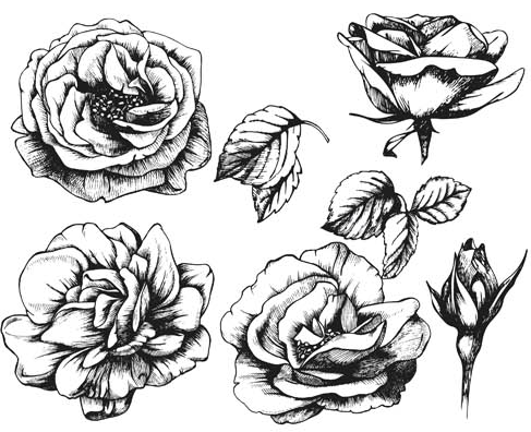 487x396 Flowers Tattoo Set Ai Format Free Vector Download