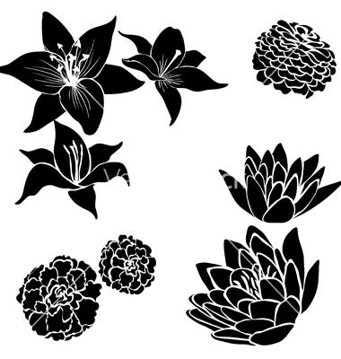 Flower Vector Black