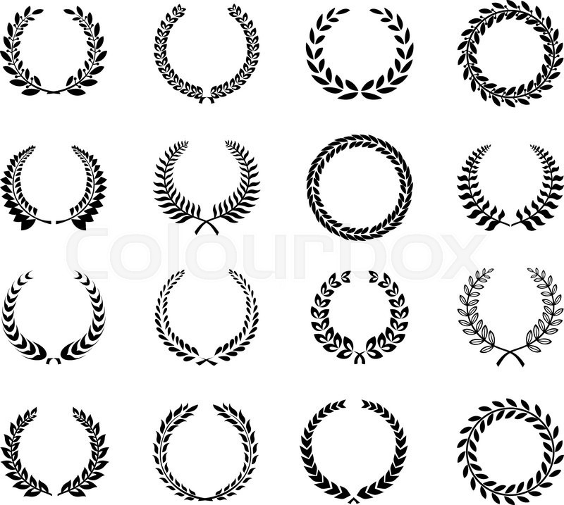 800x717 Laurel Wreaths Flower Vector Illustration Modern Style Laurel