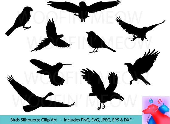 570x417 Bird Svg Bird Silhouette Bird Clipart Bird Vector Bird Etsy