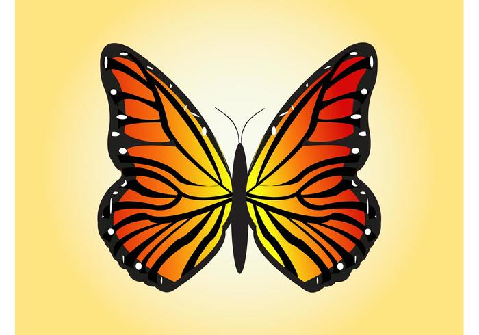 700x490 Flying Butterfly Vector