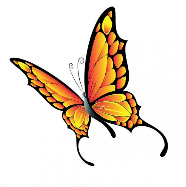 623x626 Flying Butterfly Vector Free Download