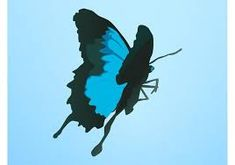 235x165 Image Result For Flying Butterfly Vector Butterfly