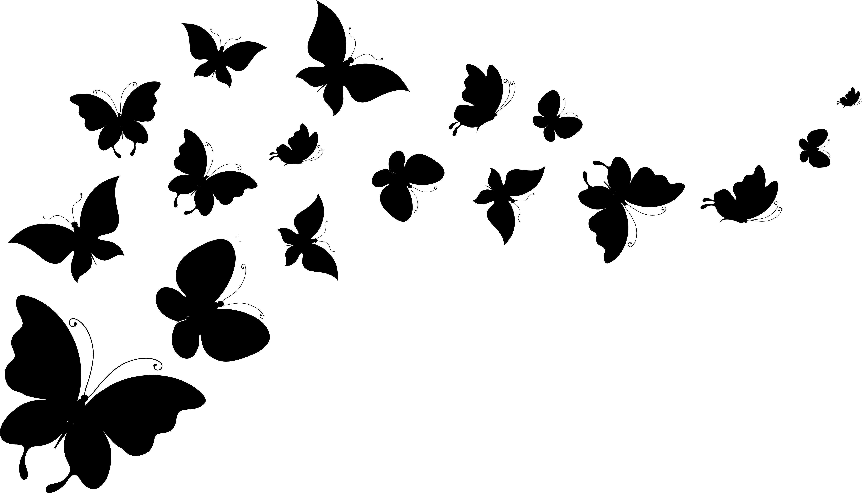 5418x3097 Picture Butterflies Animals Vector Graphics 5418x3097