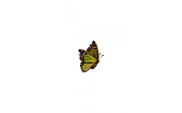 716x443 Butterfly Vector Art Pack Illustration Flying In The Air