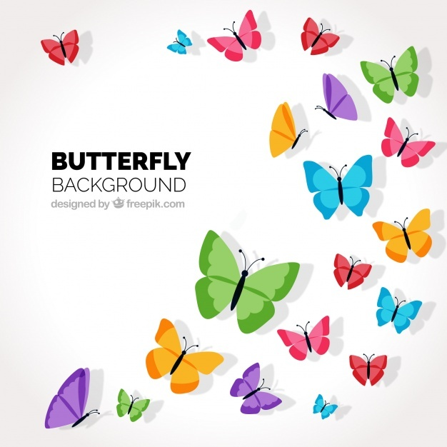 626x626 Butterfly Vectors, Photos And Psd Files Free Download