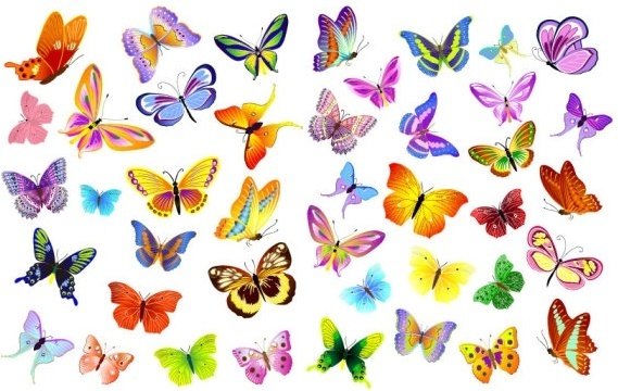569x360 Butterfly Fly Free Vector Download (3,407 Free Vector) For