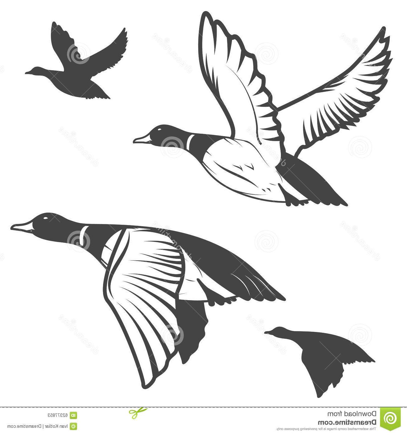 1300x1390 Collection Of Flying Duck Drawing High Quality, Free