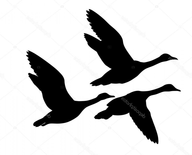 1228x990 Stock Illustration Vector Silhouette Flying Ducks On Createmepink