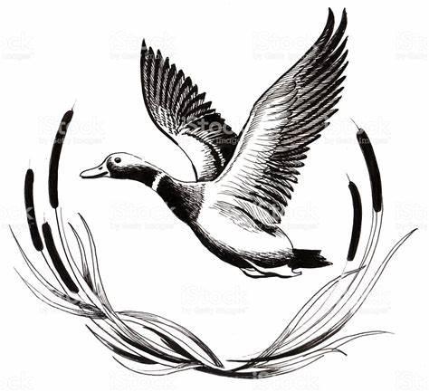 474x433 Duck Hunting Vector. Deer Hunting Silhouette Google
