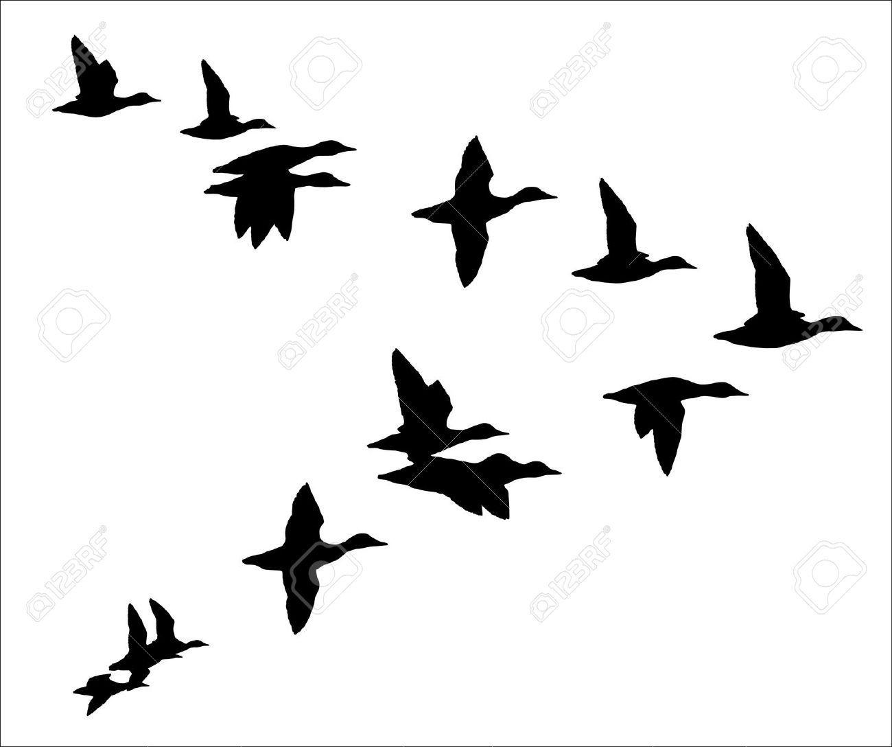 1300x1088 Flock Of Birds Clipart Duck