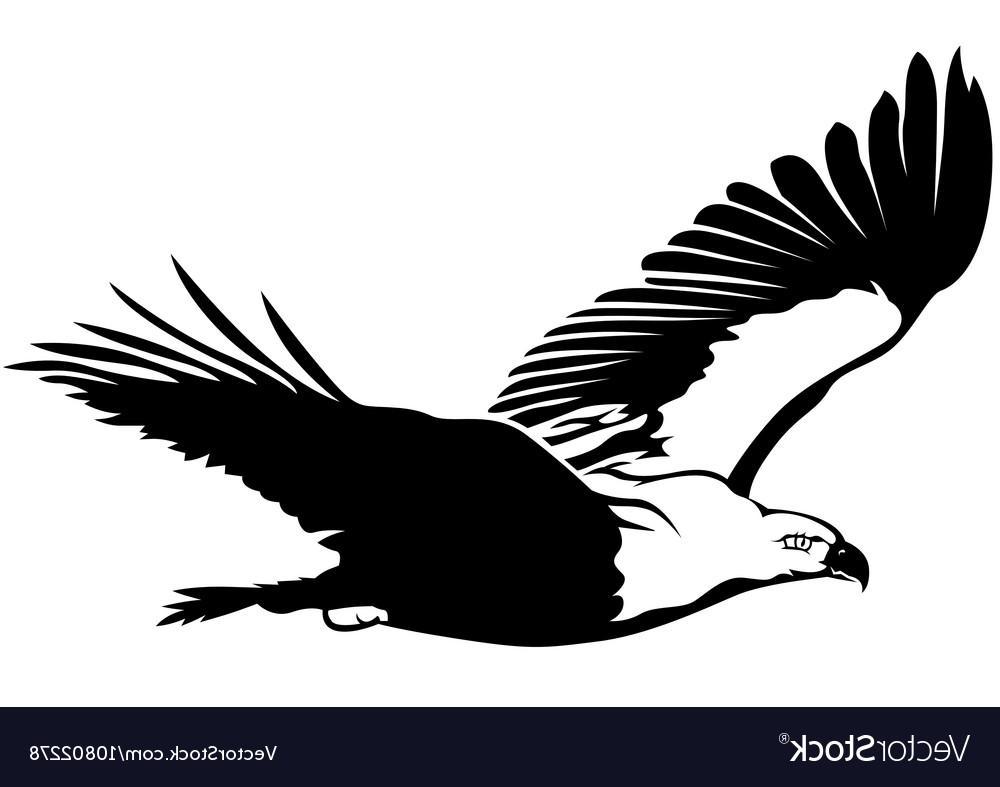 1000x787 Best 15 Flying Eagle Vector Design