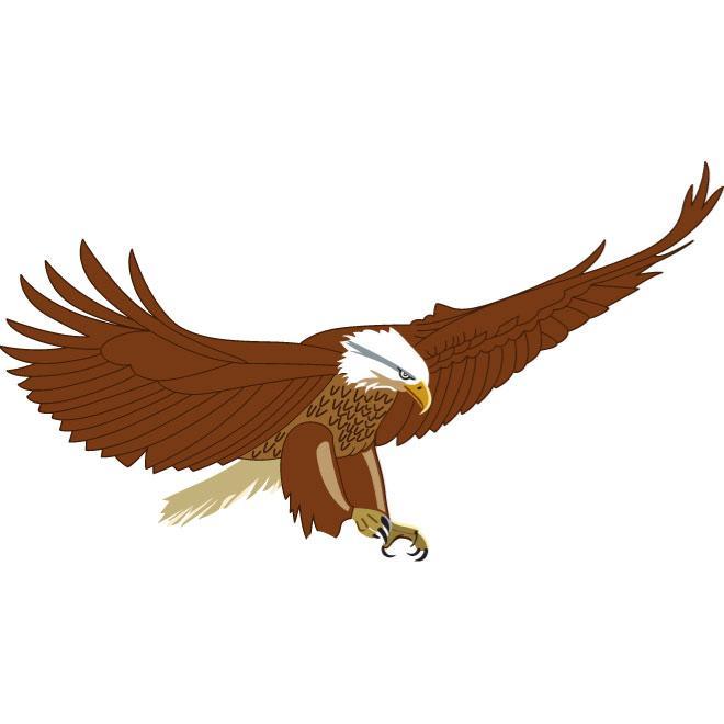 660x660 Flying Eagle Vector