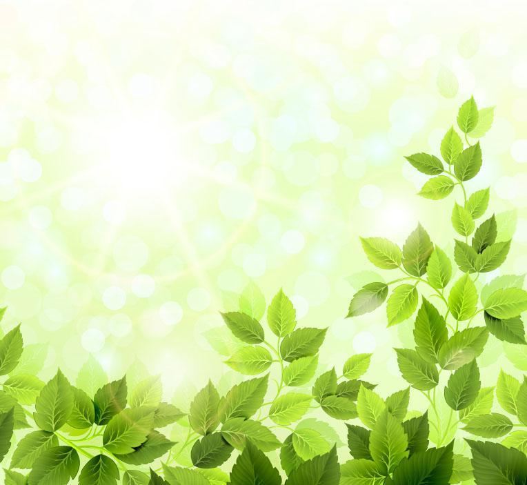 764x703 Fine Emerald Green Foliage Background Vector [Ai]
